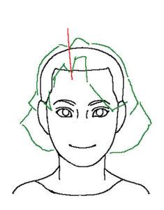 髪正面1補助線