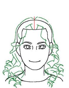 髪正面4補助線