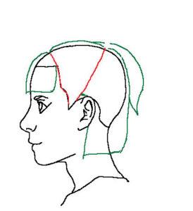髪横顔3補助線
