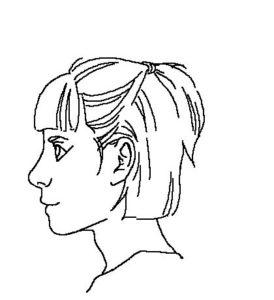 髪横顔3線画