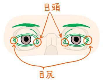 図:目頭と目尻