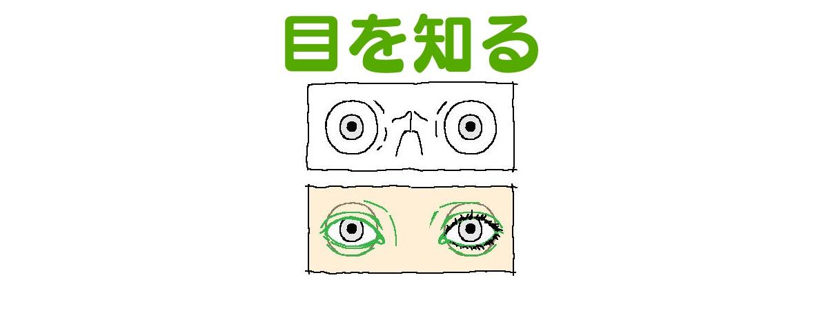 イラストで目を描くときに悩む初心者さんへの描き方のヒント ライン