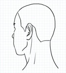 斜め後ろ向きの図2~完成例1