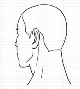 斜め後ろ向きの図2~完成例2
