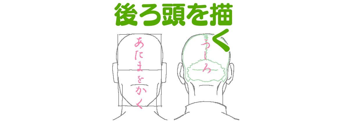 後ろ頭をそれらしく描くために把握しておきたいことと描き方 ライン