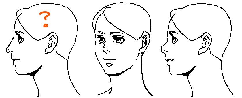 鼻の種類~例3
