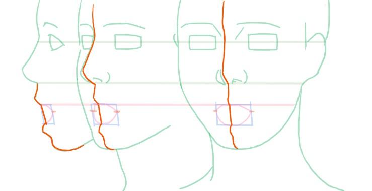 開いた口、顔の中央線