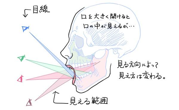 口の中の見え方