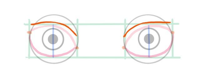 目の描き方~二重