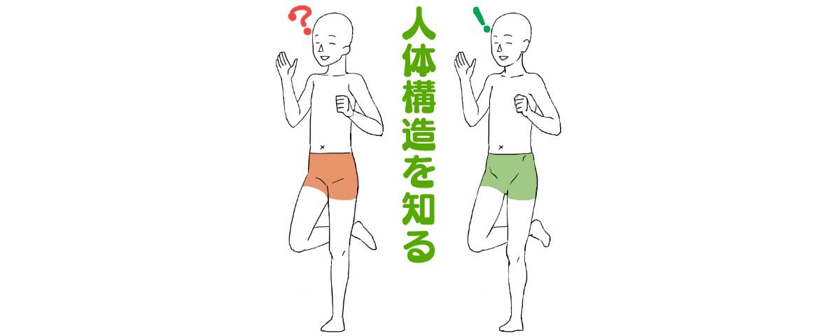 イラストで人を描くには人体構造を知ることが上達の近道 ライン