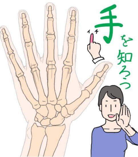 イラストで手を楽しく描くコツは、手を知って見慣れること!