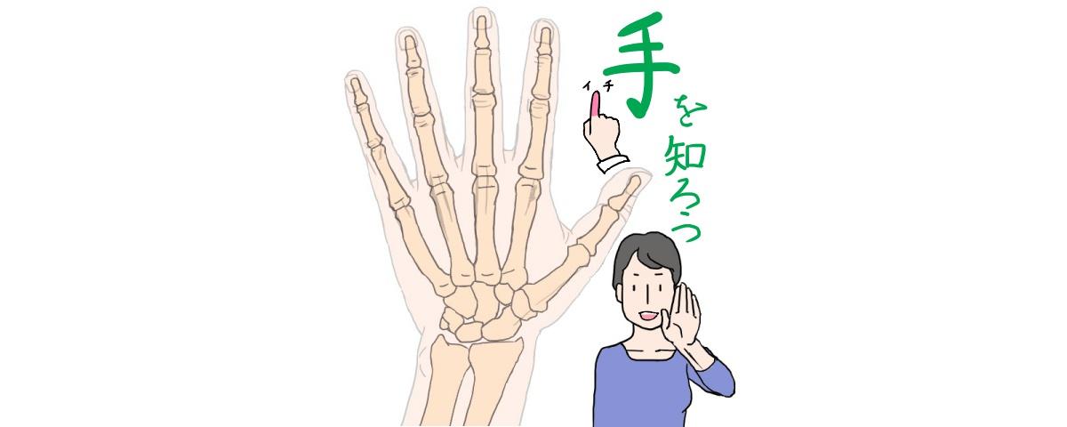イラストで手を楽しく描くコツは手を知って見慣れること ライン