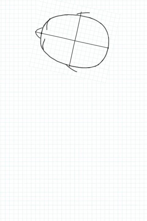 上から見た頭の図を貼る