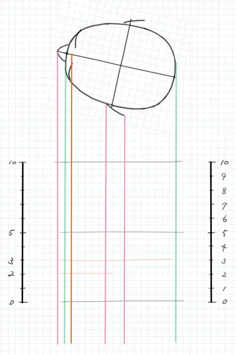 顔のパーツの位置の補助線2