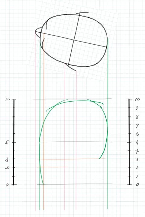 頭の輪郭線を描く