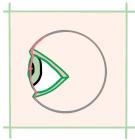 目とまぶたの図、真横向き