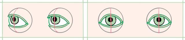 目とまぶたの図、正面と斜め向き