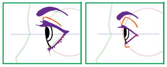 横向きの目の描き方~眉毛