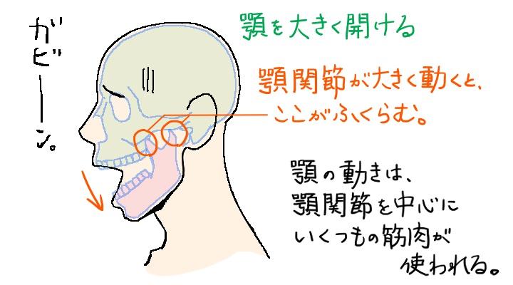 大きく顎を開ける