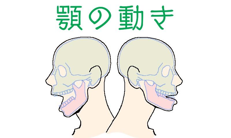 顎の動き、表題