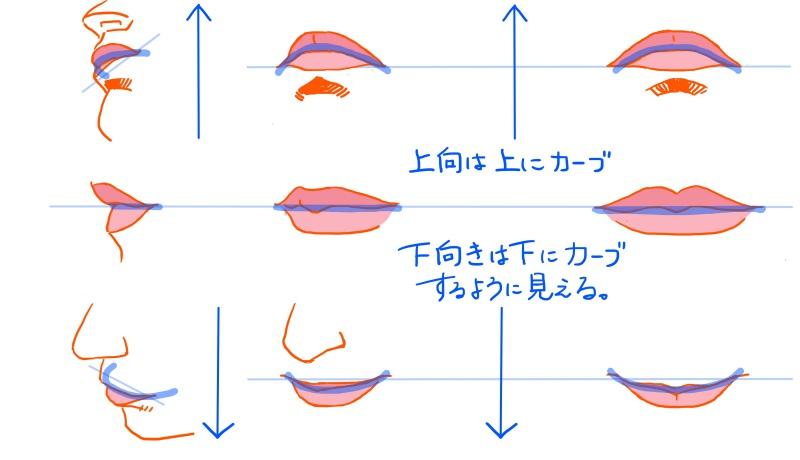 口の見え方