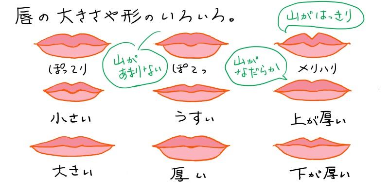 唇の形や大きさの違い
